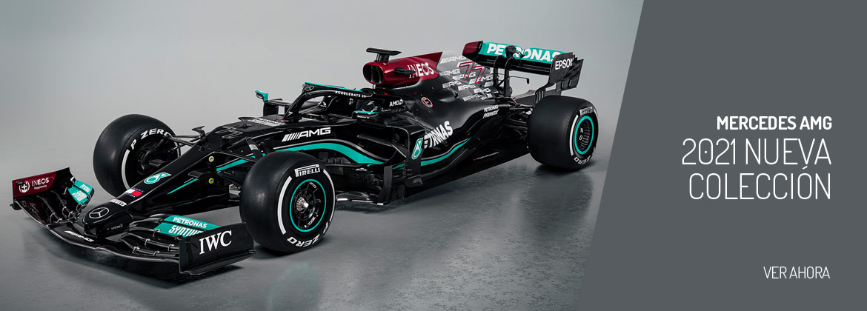 Mercedes AMG Petronas F1 Team 2021